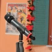 Microfono studio1