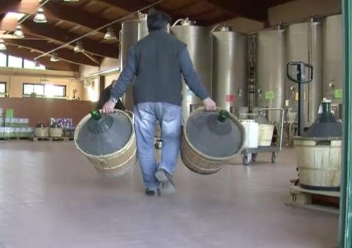 Inchiesta vino Terre Oltrepo: sequestri preventivi per 7 milioni agli ex manager